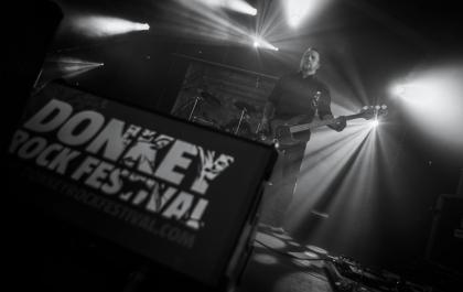 Donkey 2014 - ©Loïc Warin