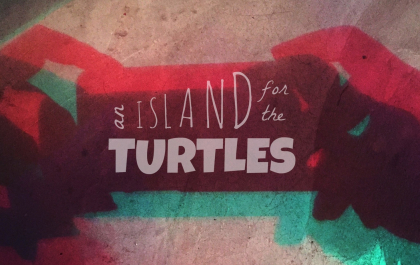 AN ISLAND FOR THE TURTLE